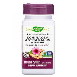 Эхинацея, астрагал и рейши, Echinacea Astragalus & Reishi, Nature's Way, 1200 мг, 100 кап.