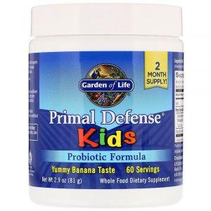 """Пробиотическая формула для детей """"основная защита"""", банан, Probiotic Formula, Garden of Life, 81 г"""