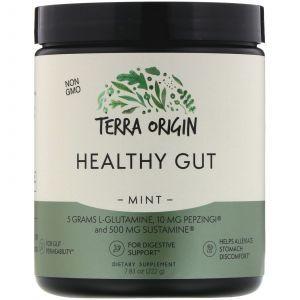 Здоровый кишечник, Healthy Gut, мята, 222 г