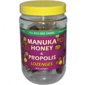 Прополис, Y.S. Eco Bee Farms, Манука, 20 шт, 92 г