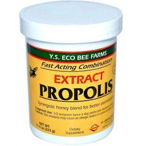 Прополис, Y.S. Eco Bee Farms, Экстракт, паста, 323
